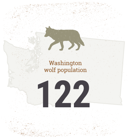 Washington Wolf Population 122