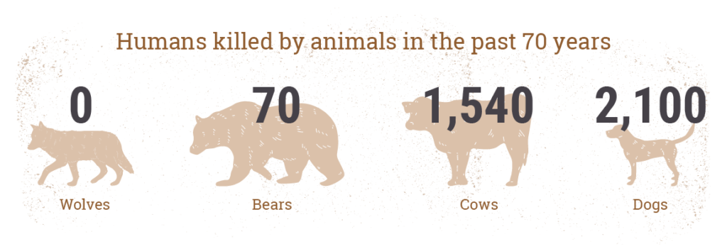 Human Deaths Count by Animals